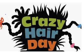 Don't Forget Crazy Hair Day is October 11th!!